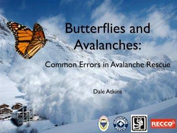 11-butterflies_avalanches_atkins_2011 - IKAR-CISA