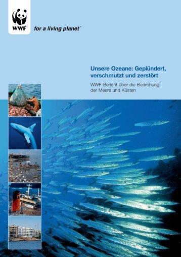Unsere Ozeane: Geplündert, verschmutzt und ... - IKZM-D Lernen