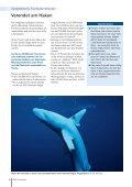 Unsere Ozeane: Geplündert, verschmutzt und ... - IKZM-D Lernen - Seite 6