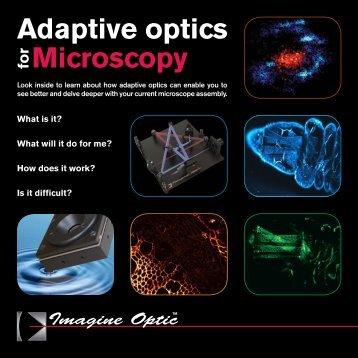 Adaptive optics for Microscopy - Imagine Optic