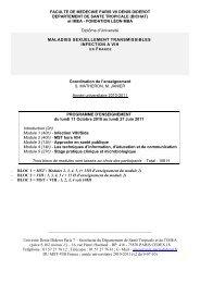 PROG MST-VIH 2010-11 V3 définitive 13-07 sans intervenants - IMEA