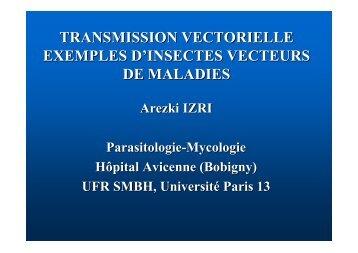 transmission vectorielle exemples d'insectes vecteurs de ... - IMEA