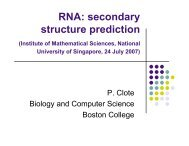 RNA: secondary structure prediction - Institute for Mathematical ...