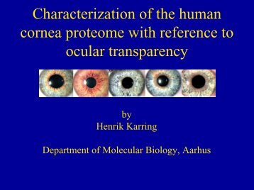 Characterization of the human cornea proteome with reference to ...
