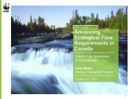 Tony Maas - Grand River Conservation Authority