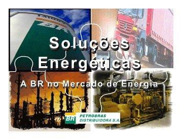 Petrobras-BR como alavancadora de projetos álcool e ... - INEE