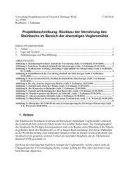 Projektbeschreibung: Rückbau der Verrohrung des Steinbachs im ...