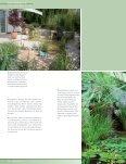 Wassergarten auf einer Dachterrasse - Egli Gartenbau AG - Seite 3