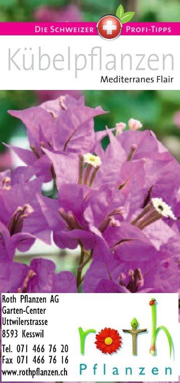 Kübelpflanzen - Roth Pflanzen AG