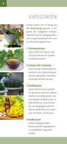 Kräuter - Roth Pflanzen AG - Seite 4