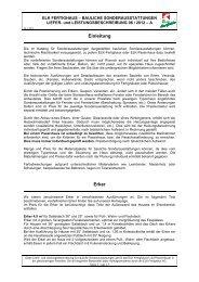 Liefer- und Leistungsbeschreibung - Elk Fertighaus AG