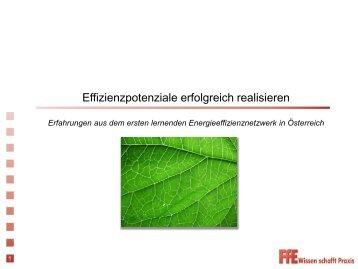 Effizienzpotenziale erfolgreich realisieren - Fill