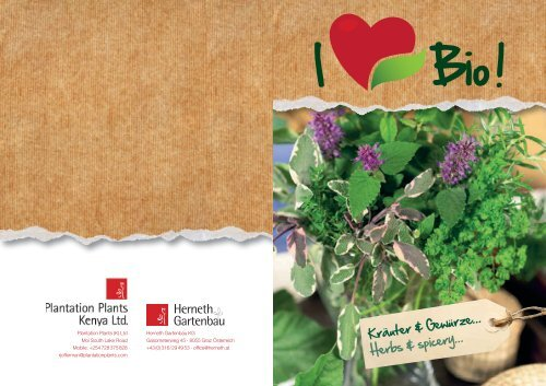 Kräuter & Gewürze... Herbs & spicery... - Herneth
