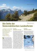 Die Fichte – - Steiermärkische Landesforste - Seite 4