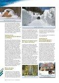 Die Fichte – - Steiermärkische Landesforste - Seite 5