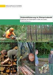 PDF-Datei [936KB] - Info-Holzmobilisierung.de