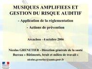 musiques amplifiees et gestion du risque auditif - Centre d ...