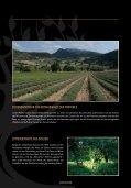 DOWNLOAD Fever-Tree Folder - Weinturm - Page 5
