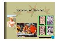 Hormone und Knochen