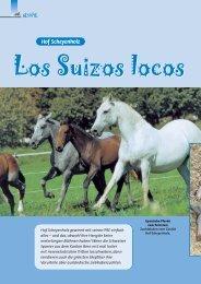 Ausführlicher Bericht über den Hof Scheyenholz im Pegasus ...
