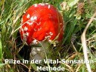Pilze in der Vital-Sensation- Methode