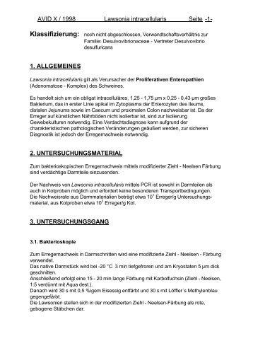 lawsonia intracellularis-x-1998 - Dvg