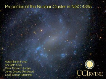 Properties of the Nuclear Cluster in NGC 4395