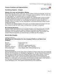 Themen Praktikas und Diplomarbeiten ... - Kapelan Gruppe