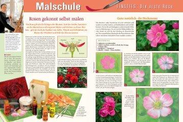"Malschule ""Rosen"" - Efco"