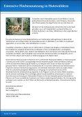 Rassen und Züchter - Highland Cattle Lilienthal - Seite 7