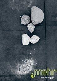 Geschäftsbericht 2011 - Binder+Co AG
