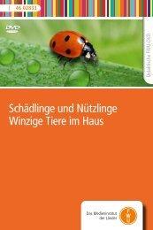 Schädlinge und Nützlinge Winzige Tiere im Haus - FWU