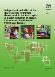 Independent evaluation of the ILO's strategy to promote decent work ...