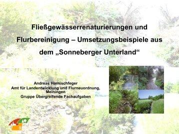 Fließgewässerrenaturierungen und Flurbereinigung ...