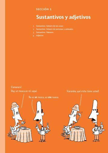 sección 1 Sustantivos y adjetivos - Intertaal