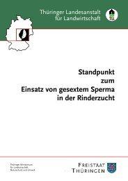 Einsatz vom gesextem Sperma in der Rinderzucht - Thüringer ...