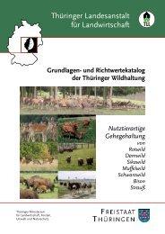 Grundlagen- und Richtwertekatalog der Thüringer Wildhaltung