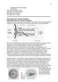1 Neuroophthalmologie – Script von Dr. K. Hartmann, Orthoptik und ... - Seite 2