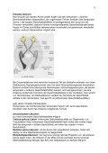 1 Neuroophthalmologie – Script von Dr. K. Hartmann, Orthoptik und ... - Seite 5
