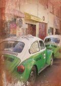 EntrEmEs & sopas - Iguana Bar & Grill - Seite 5