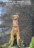 bitte hier klicken... - Pro Animale - Seite 2