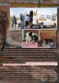 bitte hier klicken... - Pro Animale - Seite 5