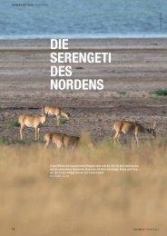 DIE SERENGETI DES NORDENS - Zoologische Gesellschaft Frankfurt