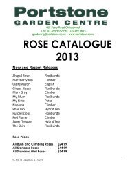 ROSE CATELOGUE 2013.pdf