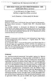 DER GLEITAAR (Elanus caeruleus)