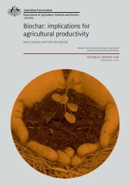 Biochar: implications for agricultural productivity - Australian Natural ...