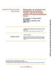 Isolates and the Biological Activity of Fusarium-Produced