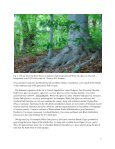 Remnant Natural Areas in Parks, Waterways ... - City of Alexandria - Page 6