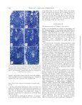 Comparative Ovule and Megagametophyte ... - Annals of Botany - Page 6