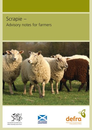 Scrapie – Advisory notes for farmers - ARCHIVE: Defra